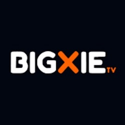 Bigxie Pro Apk Download Free For Android [Moveis & Shows]